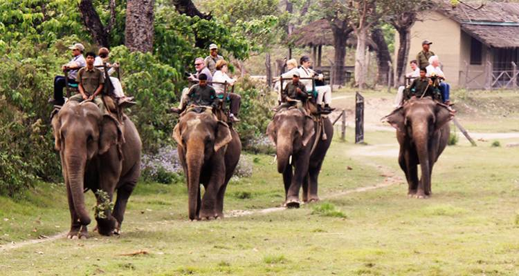 4 night 5 Days Chitwan, Pokhara Tour